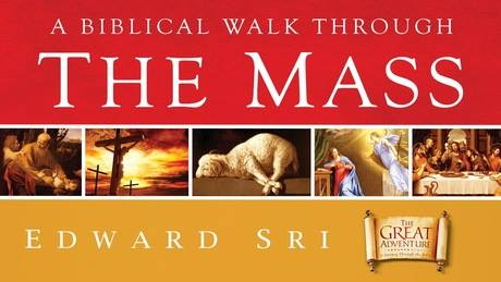 From Sunday July 15 through August 5th at 12:30pm, we will review a 4-part Biblical Walk through of the Mass. Attendees will discover the reach meanings behind why we say what we say and do during Liturgy. These sessions are free and open to all parishioners. Join us in the Parish Hall after the 11am Mass.